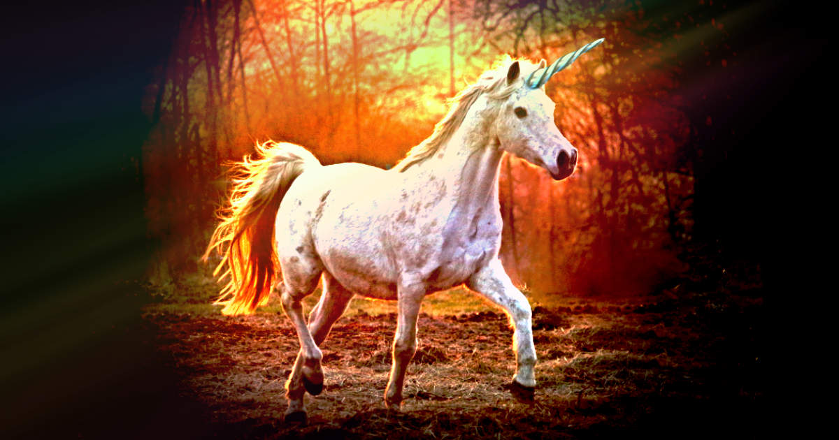 Unicorn featured image Magical Mythical Beasts and Beings